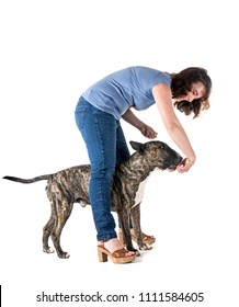 dog and owner in front of white background