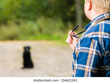 Dog owner trains his labrador retriever with a whistle, labrador retriever sits on background