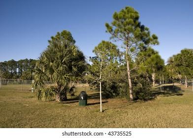 Dog Park in Florida