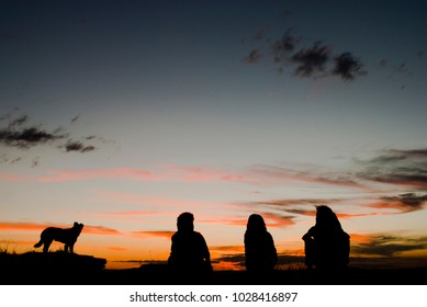 Dog and people silhouete at sunset in Brazil