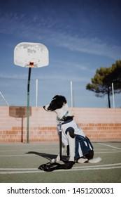 THE DOG PLAYING BASKETBALL OUTDOORS