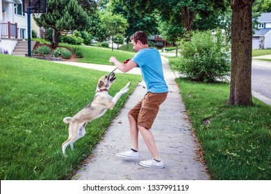 Dog playing and jumping up on teenage boy, some motion blur