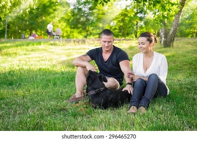 Dog plays with the owners on the park