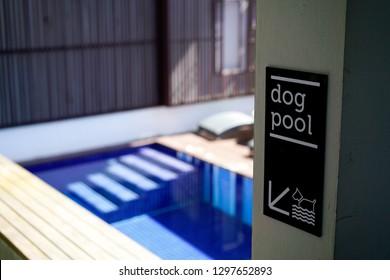 Dog pool sign
