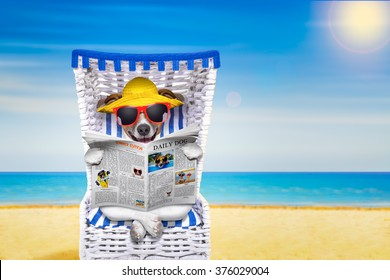 dog reading newspaper on a beach chair with sunglasses and yellow hat  on summer vacation holidays