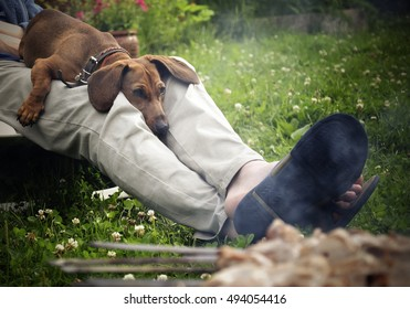 Dog resting on the lap of the owner near the grill with meat