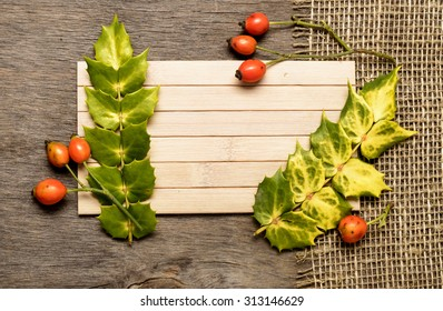 Dog Rose and arborvitae on the wooden background