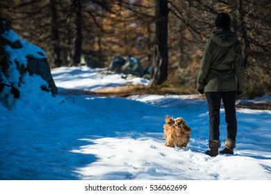 Dog running in the snow with a girl