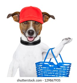 dog with a shopping basket and a red cap