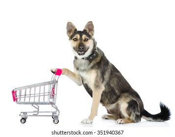 Dog with shopping trolley. isolated on white background