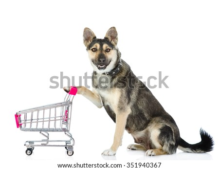 Dog Shopping Trolley Isolated On White Stock Photo (Edit Now