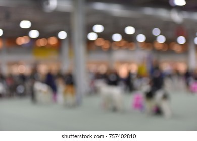 Dog show on the ring , blurred view.