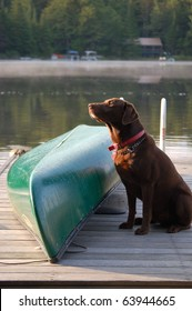 Dog sits by canoe waiting to be taken for a paddle/Time to Paddle/Patience is a Virtue