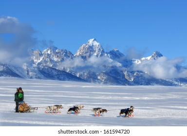 Dog Sled Team running through the mountains