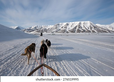 Dog sled tour across a barren winter landscape, Svalbard, Norway