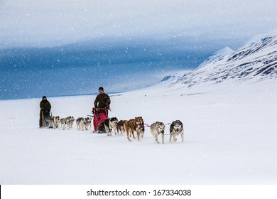 Dog sledding on a wintry Landscape, Arctic North Pole, Svalbard.