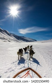 dog sledge in rugged snowy landscape with mountains in the back and blue sky