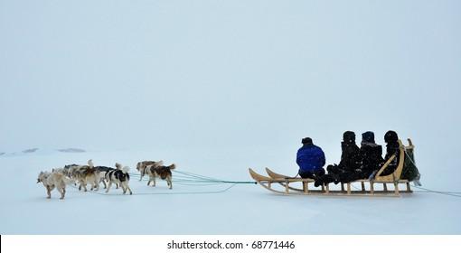 Dog sledging trip in cold snowy winter, running dogs,Kulusuk village,Greenland
