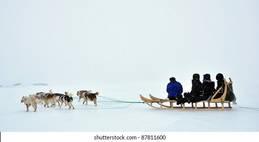Dog sledging trip in cold snowy winter, running dogs, Greenland