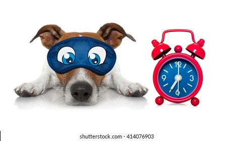 dog sleeping with eye mask  and alarm clock dreaming a dream isolated on white background
