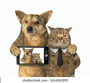The dog with a smartphone and cat in a black tie made selfie together. White background. Isolated.