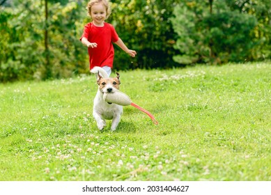 Dog with squeaky throwing toy running away from small girl on beautiful summer lawn at backyard