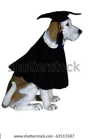 Dog Statue Dressed Black Graduation Gown Stock Photo Edit Now
