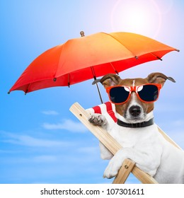 dog sunbathing on a deck chair with red umbrella