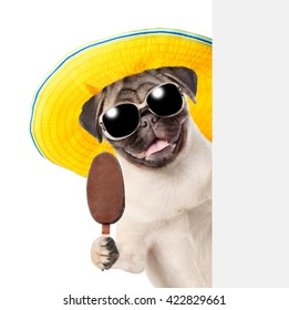 Dog in sunglasses and hat holding ice cream and peeking from behind empty board. isolated on white background
