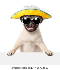 Dog  in sunglasses and hat peeking from behind empty board. isolated on white background