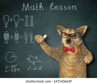 The dog teacher in a red bow tie and glasses gives math lesson near the blackboard in the classroom.