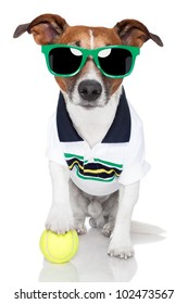 dog as tennis player with tennis ball