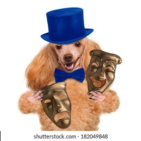 dog with theatrical masks