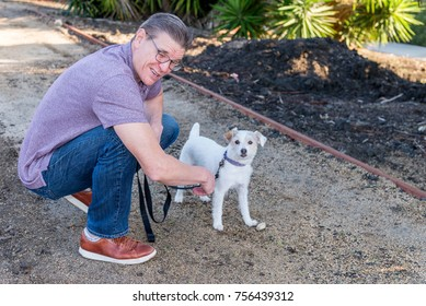 Dog trainer work with a stubborn Jack Russell terrier