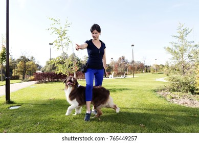 Dog Training Professional Handler Selective focus