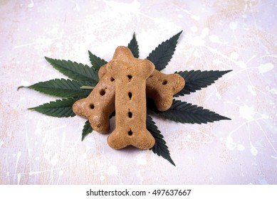 Dog treat and cannabis leaves over white wood board - medical marijuana for pets concept
