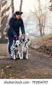 Dog walker with Dalmatian dogs enjoying in park.