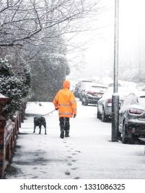 Dog walker strolling  along the streets enjoying winter season.
