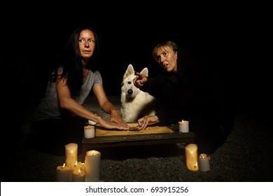 Dog watching summoning of ghosts on summer beach