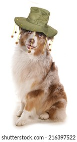 Dog wearing Australian cork hat