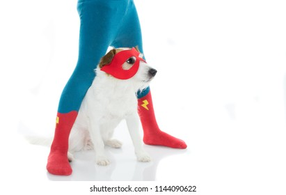 DOG WEARING A HERO MASK SITTING BETWEEN LITTLE CHILD WEARING RED AND BLUE MESH. ISOLATED ON WHITE BACKGROUND. CARNIVAL, MARDI GRAS OR HALLOWEEN COSTUME.