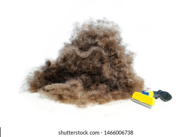 A lot of dog wool, spring pet moulting concept. Isolated on white.