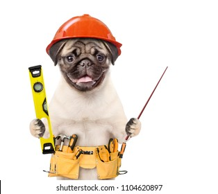 Dog worker in hard hat with tool belt and spirit level pointin away on empty space. Isolated on white background