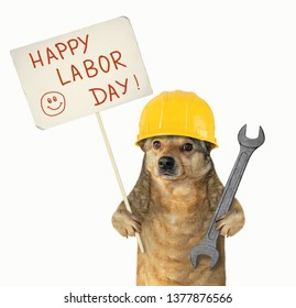 The dog worker in a helmet is holding a wr and a poster.  Happy Labor Day. White background. Isolated.