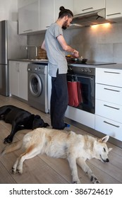 Dogs lying by the feet of their owner while he cooks dinner, comfortable loving friendship with pets