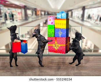 Dogs in the Mall. Are a lot of gifts and purchases.