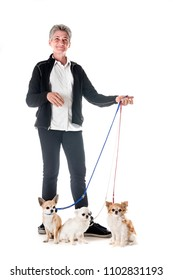 dogs and owner in front of white background