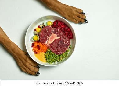 Dog's paws by bowl with food. Natural Raw Organic food for dog. Raw meat, eggs, vegetables. BARF diet.