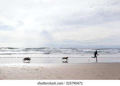 dogs are running after an adult male with bare foot by the ocean on Cannon Beach, Oregon Coast. they are playing and having fun under a beautiful sky.