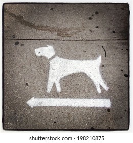 Dogs turn left on New York City sidewalk with Instagram effect filter.